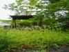 김상균의 식물원 카페 94