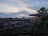 김상균의 식물원 카페 96