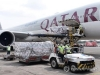 인도네시아의 시노팜백신 유료 판매, 반대여론에 잠정 연기