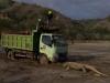 유네스코, 인도네시아 코모도 국립공원 인프라 개발 우려
